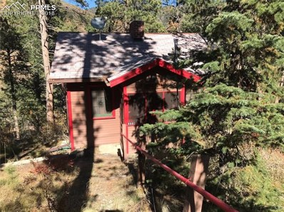 9960 Mesa Road, Cascade, CO 80809 - #: 3755919