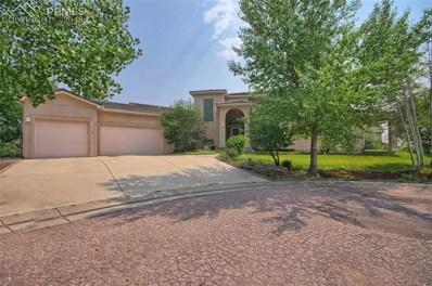 15335 Churchill Place, Colorado Springs, CO 80921 - MLS#: 3834041