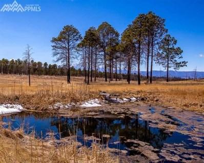 8060 Shoup Road, Colorado Springs, CO 80908 - MLS#: 3931961