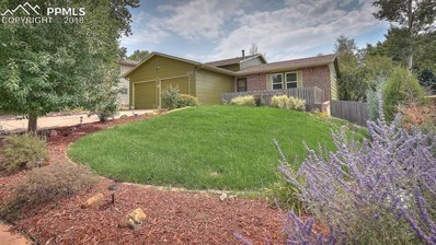 2313 Distinctive Drive, Colorado Springs, CO 80920 - MLS#: 3979500