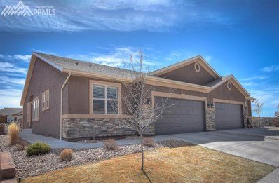 6627 Oak Trunk Point, Colorado Springs, CO 80923 - MLS#: 4028408