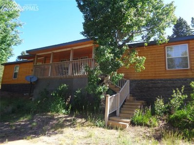 822 Fairview Drive, Cripple Creek, CO 80813 - MLS#: 4069760