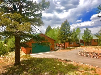 23 Idaho Circle, Florissant, CO 80816 - MLS#: 4153515