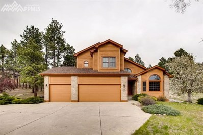 250 Wild Duck Lane, Monument, CO 80132 - MLS#: 4185468