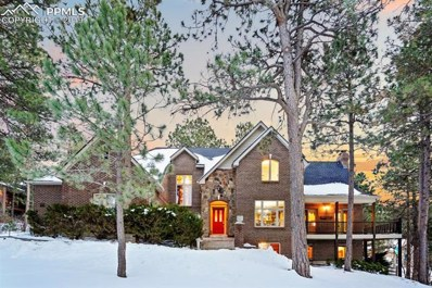 19535 Doewood Drive, Monument, CO 80132 - MLS#: 4231826