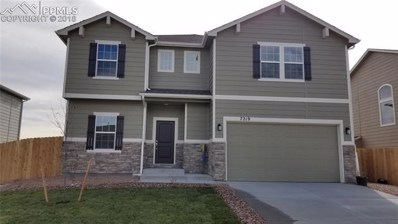 7219 Silver Moon Drive, Colorado Springs, CO 80923 - MLS#: 4237622
