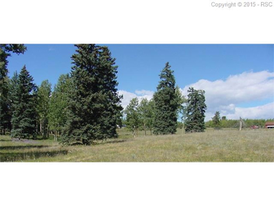 104 Owl Nest Heights Heights, Divide, CO 80814 - MLS#: 4275244