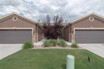 6651 Young Oak Grove, Colorado Springs, CO 80923 - #: 4291985