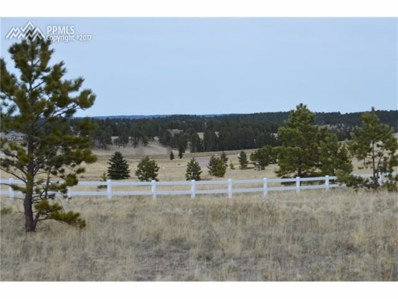 106 Stephanie Place, Divide, CO 80814 - MLS#: 4326428