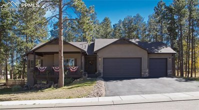 1179 Ptarmigan Drive, Woodland Park, CO 80863 - MLS#: 4455435