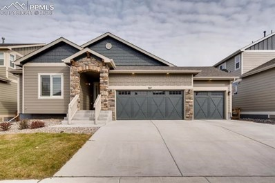767 Tailings Drive, Monument, CO 80132 - MLS#: 4619633