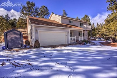 855 Gold King Drive, Cripple Creek, CO 80813 - MLS#: 4628859
