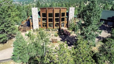 242 Simba Point, Divide, CO 80814 - MLS#: 4645684