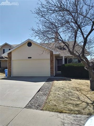 8365 Candon Drive, Colorado Springs, CO 80920 - MLS#: 4692099