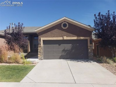 6651 Young Oak Grove, Colorado Springs, CO 80923 - MLS#: 4816040