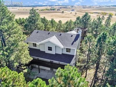 11175 Hardy Road, Colorado Springs, CO 80908 - MLS#: 4830483
