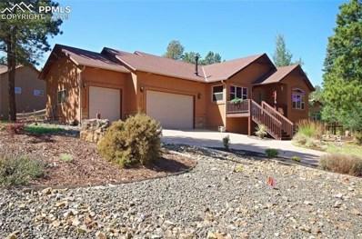 1217 Stone Ridge Drive, Woodland Park, CO 80863 - #: 4888631