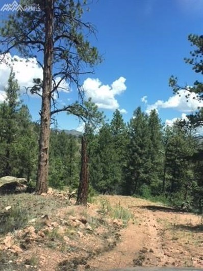 103 Bear Lake Circle, Divide, CO 80814 - MLS#: 4899634