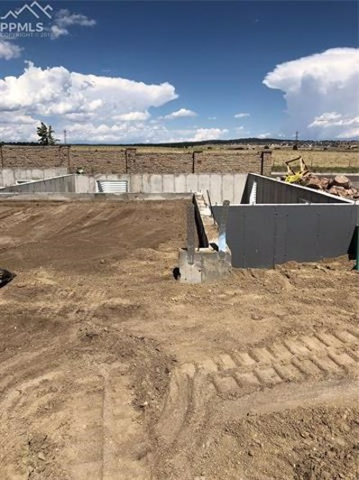 11303 Rill Point, Colorado Springs, CO 80921 - MLS#: 4908318