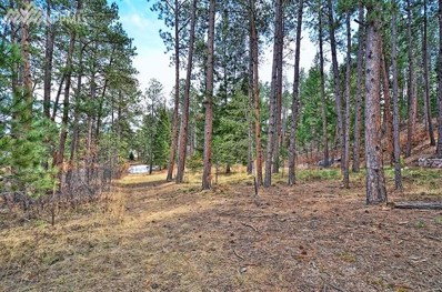 1145 Lone Scout Lookout, Monument, CO 80132 - MLS#: 4920614