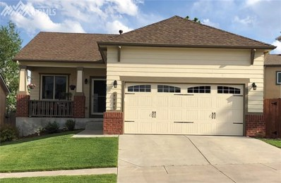 6662 Summer Grace Street, Colorado Springs, CO 80923 - MLS#: 4986987