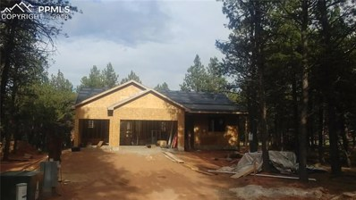 1339 Firestone Drive, Woodland Park, CO 80863 - MLS#: 4994138