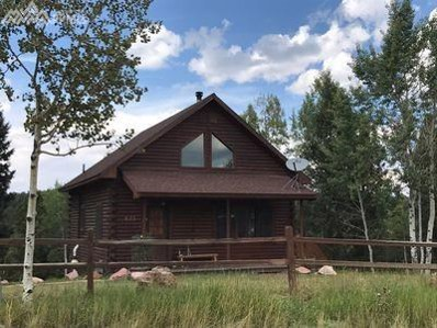 423 Cottonwood Lake Drive, Divide, CO 80814 - MLS#: 5088273