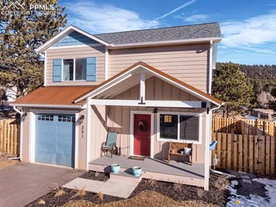 201 S Boundary Street, Woodland Park, CO 80863 - MLS#: 5101866