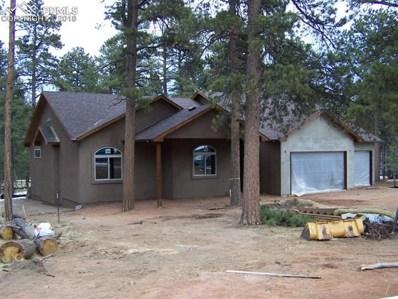 1347 Firestone Drive, Woodland Park, CO 80863 - MLS#: 5229571