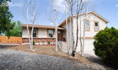 2955 Lavarie Drive, Colorado Springs, CO 80917 - MLS#: 5412484