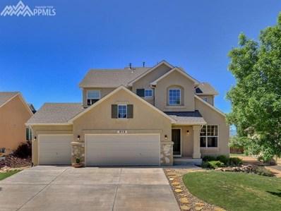 313 All Sky Drive, Colorado Springs, CO 80921 - MLS#: 5423096