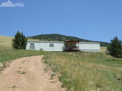 47 Monarch Drive, Cripple Creek, CO 80813 - MLS#: 5514387