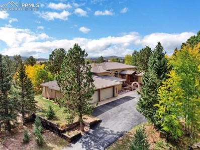 101 Suncrest Place, Divide, CO 80814 - MLS#: 5570897