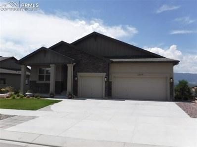 12849 Pensador Drive, Colorado Springs, CO 80921 - MLS#: 5652485