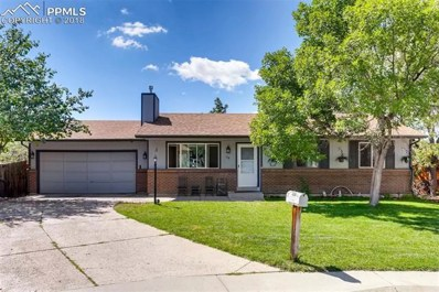 110 Baldwin Court, Castle Rock, CO 80104 - MLS#: 5737856