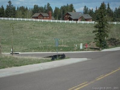 102 Samantha Way, Divide, CO 80814 - MLS#: 5811132