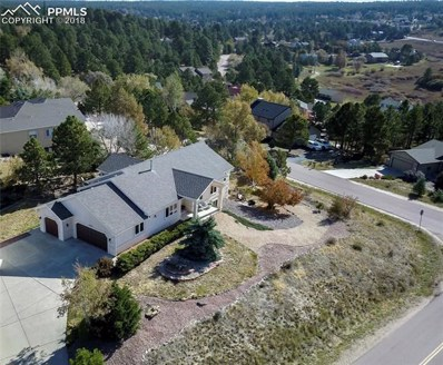 18235 White Fawn Drive, Monument, CO 80132 - MLS#: 5862132