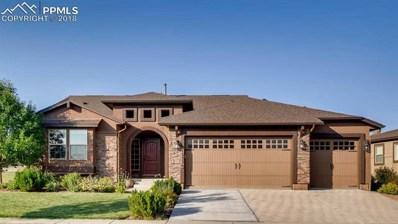 13336 Cedarville Way, Colorado Springs, CO 80921 - MLS#: 5930530
