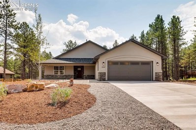 1331 Firestone Drive, Woodland Park, CO 80863 - MLS#: 5968267