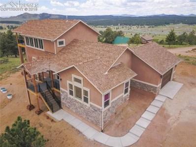 549 S Mountain Estates Road, Florissant, CO 80816 - MLS#: 5992821