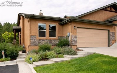 2265 Conservatory Point, Colorado Springs, CO 80918 - MLS#: 6037302