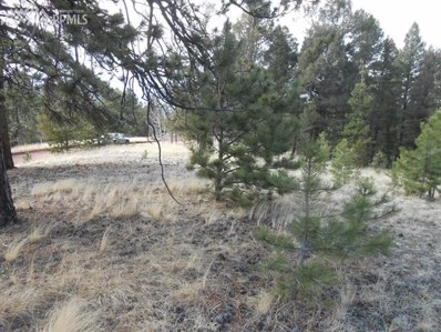 266 Wabash Terrace, Cripple Creek, CO 80813 - MLS#: 6090186