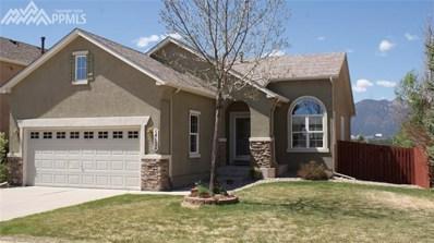 14124 Tern Street, Colorado Springs, CO 80921 - MLS#: 6163661