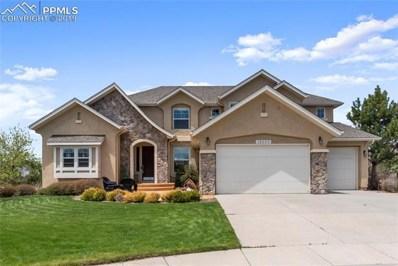13992 Windy Oaks Road, Colorado Springs, CO 80921 - MLS#: 6176120