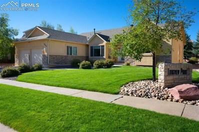 2325 VanReen Drive, Colorado Springs, CO 80919 - MLS#: 6201159