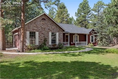 18160 Six Trees Lane, Monument, CO 80132 - MLS#: 6222795