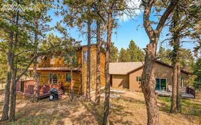 12 Druid Trail, Florissant, CO 80816 - MLS#: 6266154