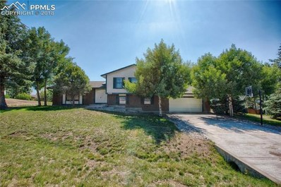445 Picasso Court, Colorado Springs, CO 80921 - MLS#: 6317380