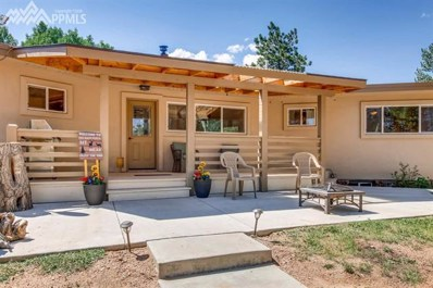 43 Shallow Creek Road, Woodland Park, CO 80863 - MLS#: 6341200