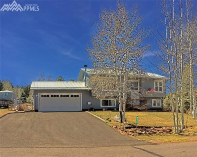 828 E Northwoods Drive, Woodland Park, CO 80863 - MLS#: 6347760